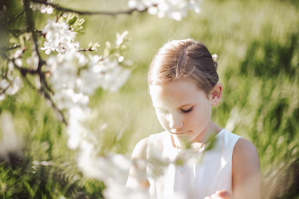 Fotos zur Apfelblüte